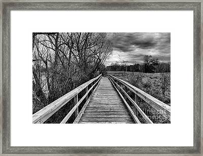 Dark And Twisty Framed Print