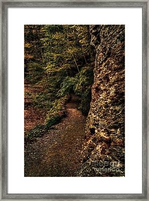 Dark Autumn Path Framed Print by Scott Chimber