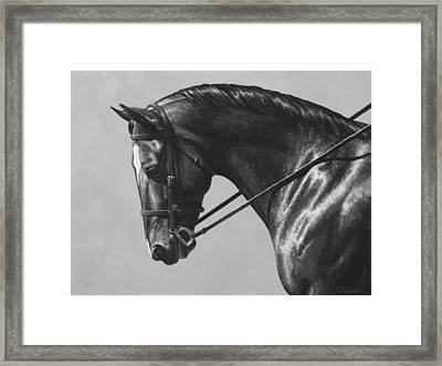 Dark Brown Dressage Horse Black And White Framed Print by Crista Forest