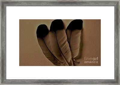 Dark Feathers Framed Print by Marsha Heiken