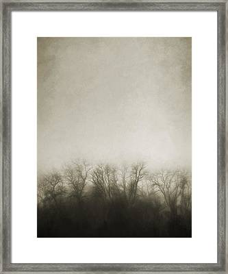 Dark Foggy Wood Framed Print