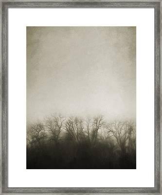 Dark Foggy Wood Framed Print by Scott Norris