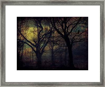 Dark Forest Framed Print