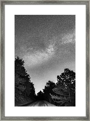 Dark Forest Night Light Framed Print