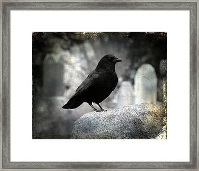 Dark Gothic Crow Framed Print