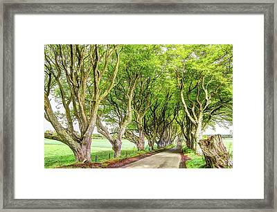 Dark Hedges, Game Of Thrones Framed Print