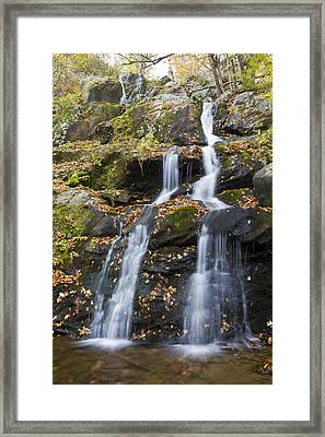 Dark Hollow Falls Shenandoah National Park Framed Print by Pierre Leclerc Photography