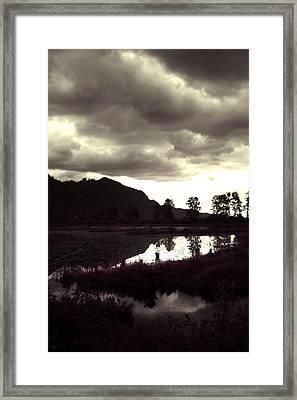 Dark Lake Framed Print by Liz Towers