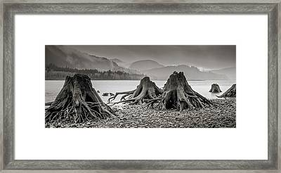 Dark Lake Framed Print
