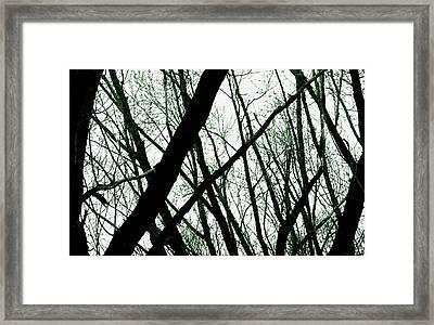 Dark Limbs Framed Print by Steven Milner
