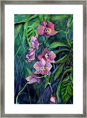 Dark Orchid Framed Print by Mindy Newman