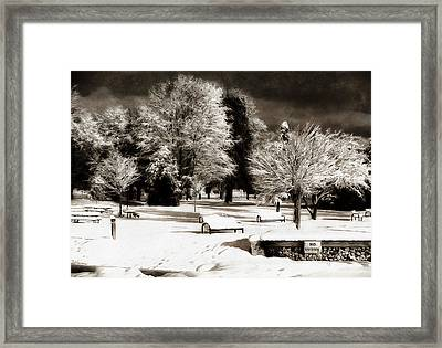 Dark Skies And Winter Park Framed Print