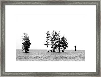 Dark Sound Framed Print by Angela DiPietro