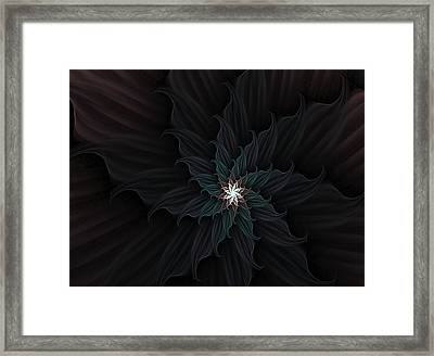 Dark Star Flower Framed Print