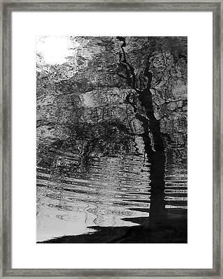 Dark Vision Framed Print