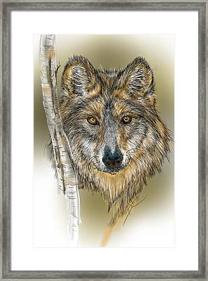Framed Print featuring the digital art Dark Wolf With Birch by Darren Cannell