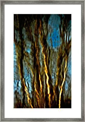 Dark Wood Framed Print by Gillis Cone