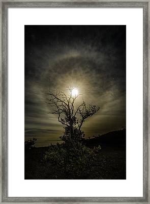 Darker Side Of Night  Framed Print