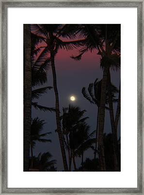 Darkness Framed Print by Raquel Amaral