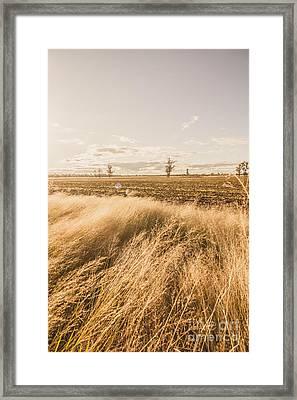 Darling Downs Rural Field Framed Print by Jorgo Photography - Wall Art Gallery