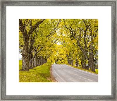Darling Hill Autumn Framed Print by Tim Kirchoff