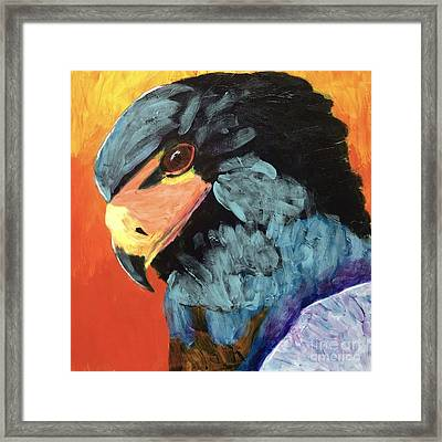 Darth Vader Hawk Framed Print