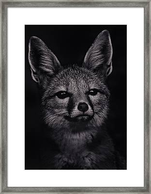 Dash  Framed Print