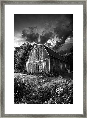 Dauntless Framed Print by Phil Koch