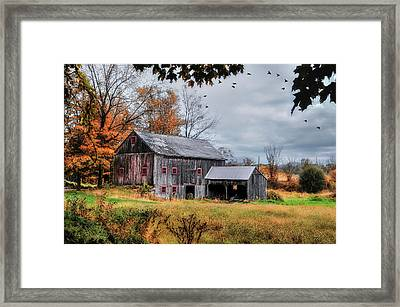 Davenport Farm - Connecticut Scenic Framed Print by Thomas Schoeller
