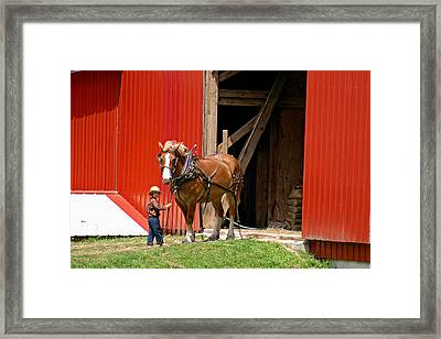 David And Goliath Number Two Framed Print by Brian M Lumley