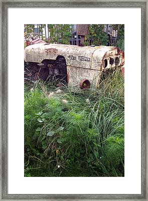 David Brown Grown Framed Print by Jez C Self