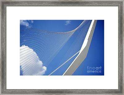 David's Harp Framed Print