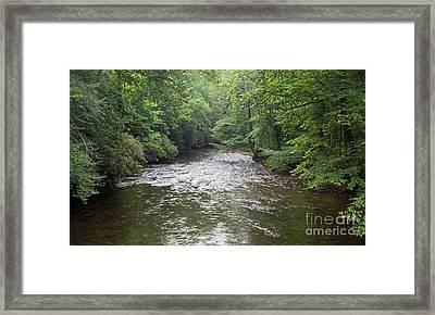 Davidson River Framed Print