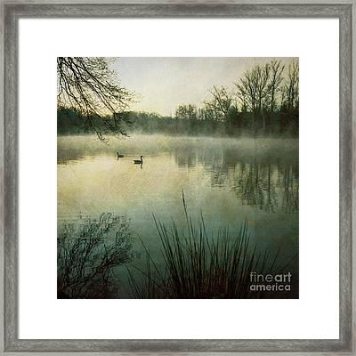 Dawn At Biltmore Lagoon Framed Print
