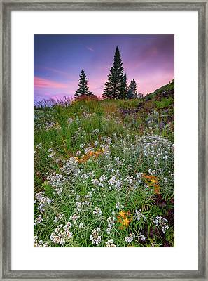 Dawn At Height Of Land Framed Print