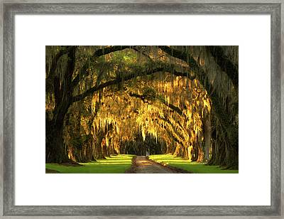 Framed Print featuring the photograph Dawn Awakes by Bernard Chen
