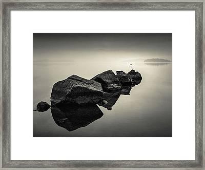 Dawn Flight Framed Print by Dave Bowman
