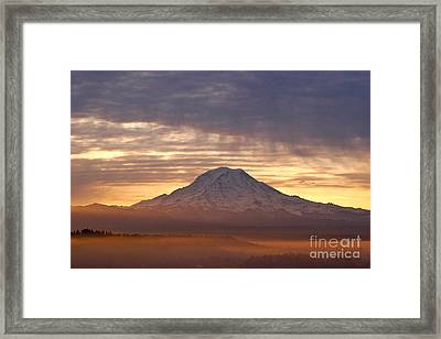 Dawn Mist About Mount Rainier Framed Print