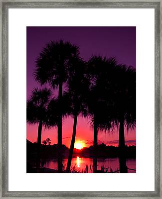 Dawn Of Another Perfect Day Framed Print