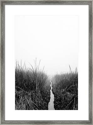 Dawn On Back Bay  Framed Print