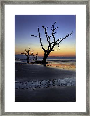 Dawn On Bull Island Framed Print