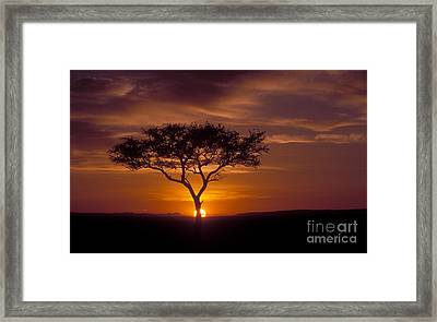 Dawn On The Masai Mara Framed Print by Sandra Bronstein
