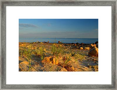 Dawn Over Cape Cod Bay Framed Print by Dianne Cowen