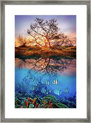 Framed Print featuring the photograph Dawn Over The Reef by Debra and Dave Vanderlaan