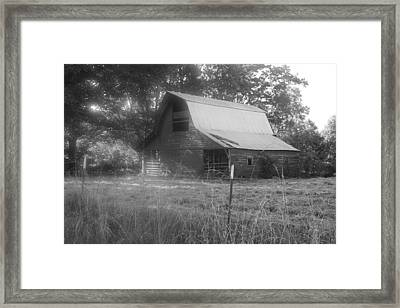 Dawn's Early Light Framed Print by Dawn Davis