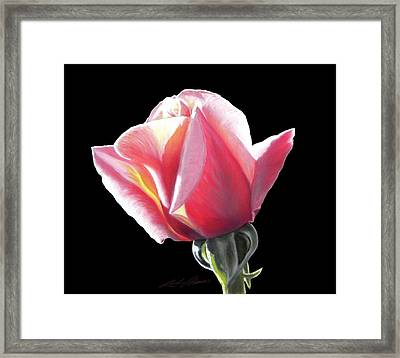 Dawn's Early Light - Pastel Framed Print