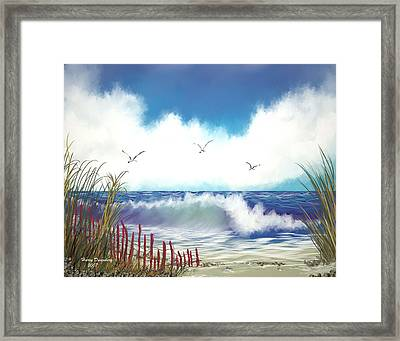 Day At The Beach Framed Print by Harry Dusenberg