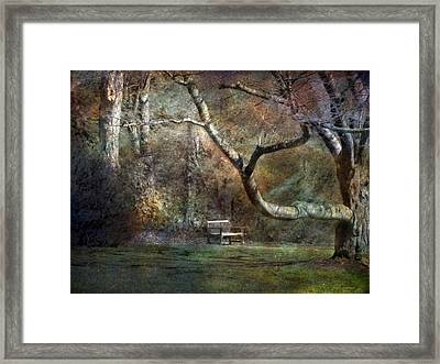 Framed Print featuring the photograph Day Dream by John Rivera