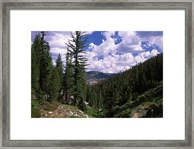Day Hike Framed Print