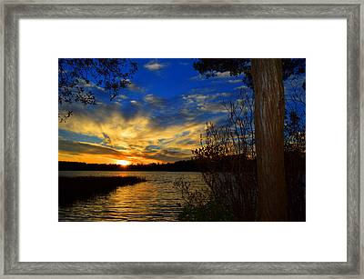Day Is Done Framed Print by Dianne Cowen